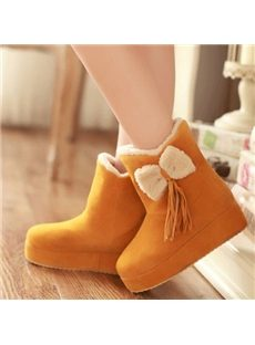 Lovely Bowknot Tassels Snow Boots